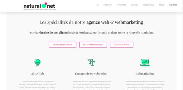 meilleures agences web bordeaux : Natural net